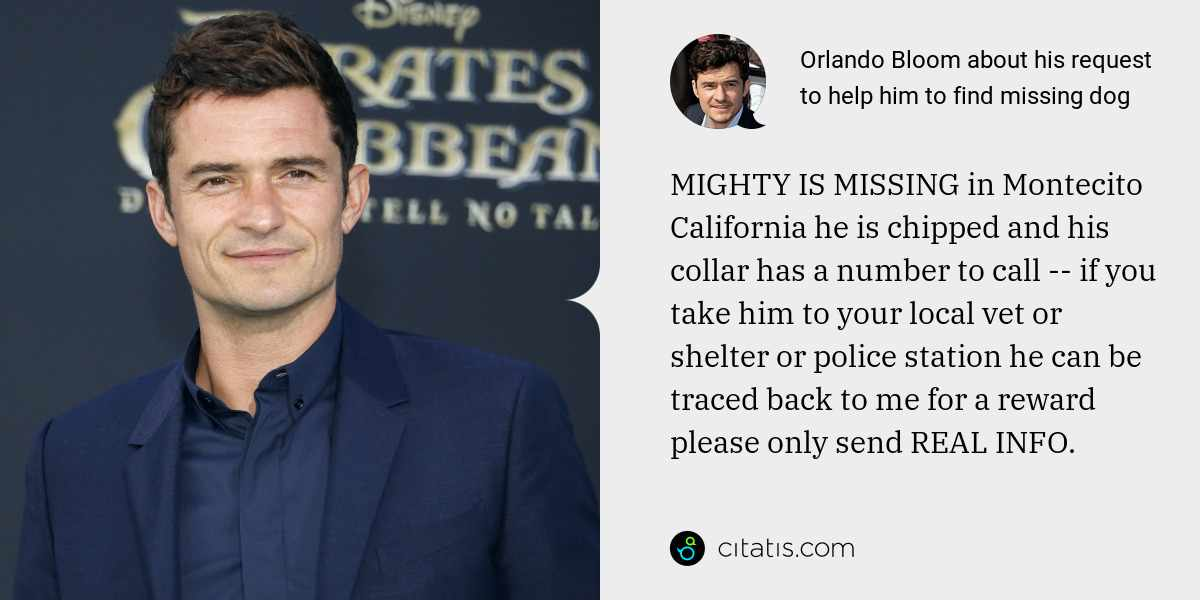Orlando Bloom: MIGHTY IS MISSING in Montecito California he is chipped and his collar has a number to call -- if you take him to your local vet or shelter or police station he can be traced back to me for a reward please only send REAL INFO.