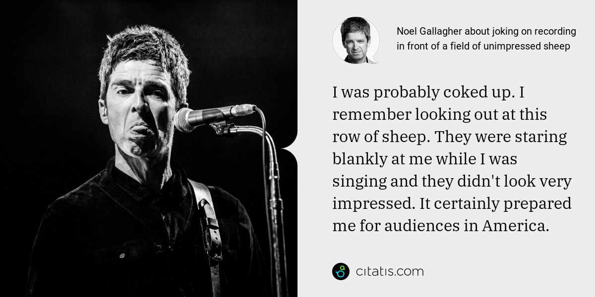 Noel Gallagher: I was probably coked up. I remember looking out at this row of sheep. They were staring blankly at me while I was singing and they didn't look very impressed. It certainly prepared me for audiences in America.